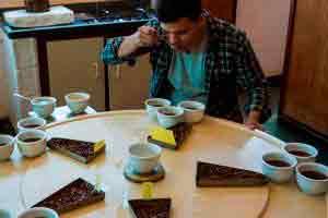 Curso online grátis de Degustador de Café