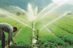 Curso online grátis de Projeto de Irrigação