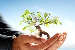 Curso online grátis de Introdução à Gestão e Licenciamento Ambiental
