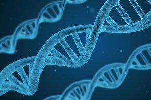 Curso online grátis de Introdução à Biofísica