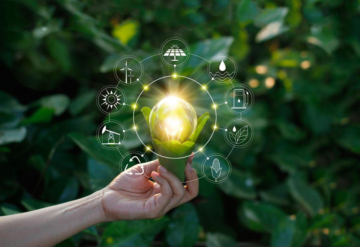 Curso online grátis de Gestão do Meio Ambiente : Sustentabilidade e Educação Ambiental