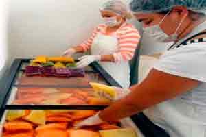 Curso online grátis de Produção de Poupas de Frutas