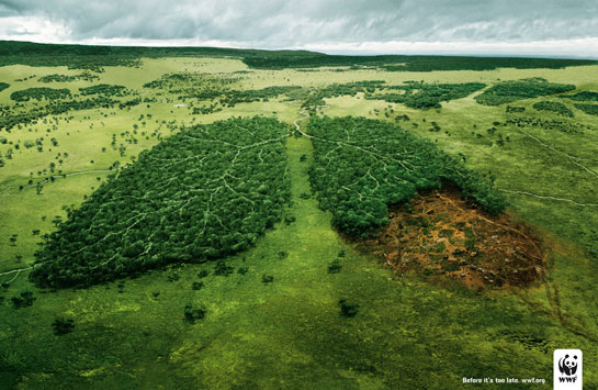 Curso online grátis de Meio Ambiente e Futuro