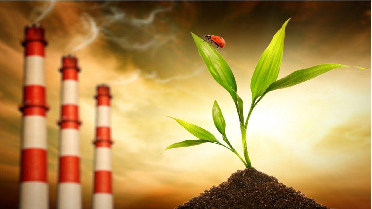 Curso online grátis de Avaliação de Impactos Ambientais
