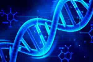 Curso online grátis de Genética e Evolução Humana