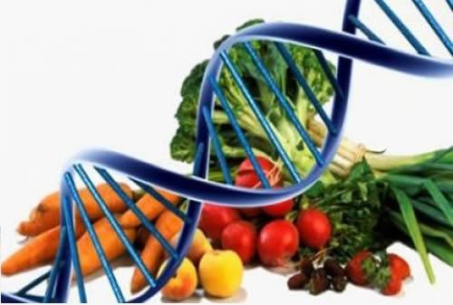 Curso online grátis de Nutrição Clínica e Funcional