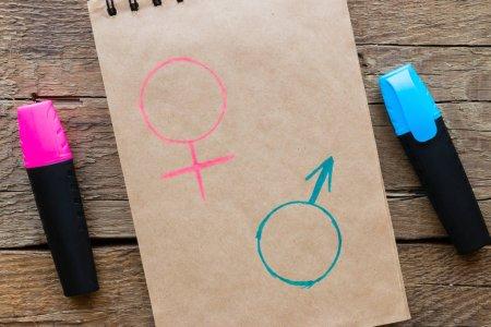 Curso online grátis de Educação Sexual