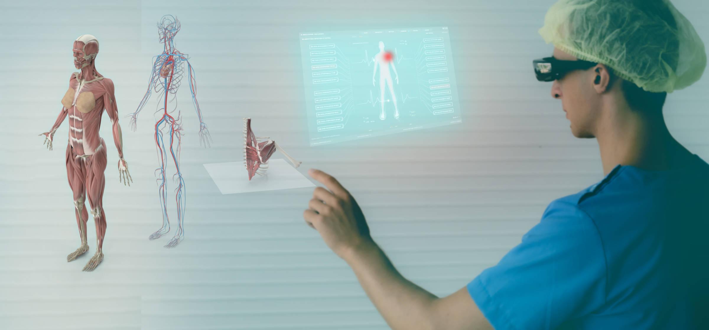 Curso online grátis de Sistema Muscular