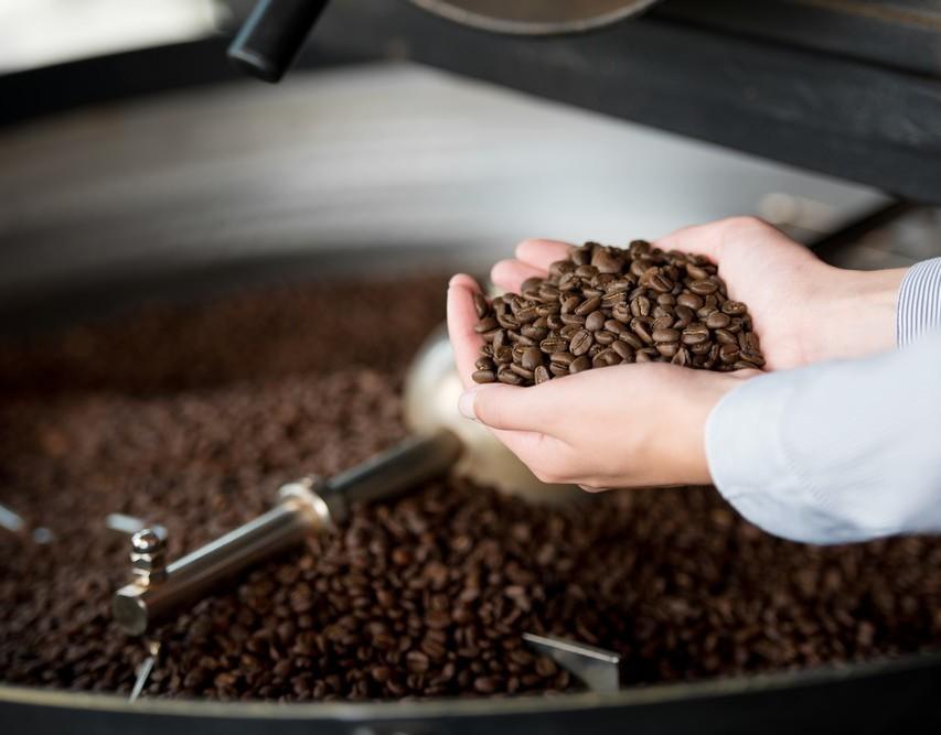 Curso online grátis de Cafeicultura Empresarial
