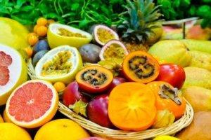 Curso online grátis de Fruticultura Básica em clima Tropical