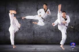 Curso online grátis de Teoria Taekwondo