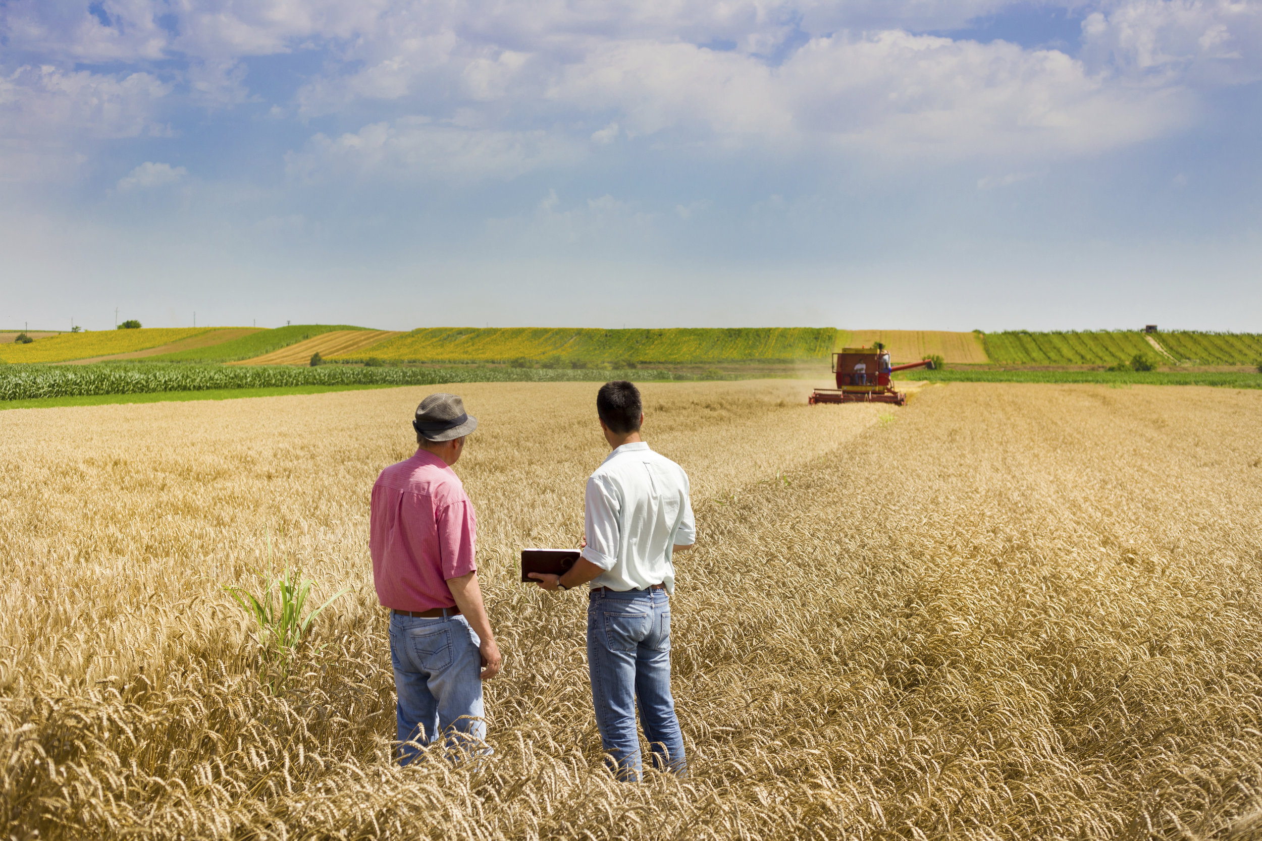 Curso online grátis de Administração Rural