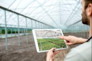 Curso online grátis de Projetos de Agropecuária