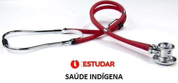 Curso online grátis de Introdução à Saúde Indígena