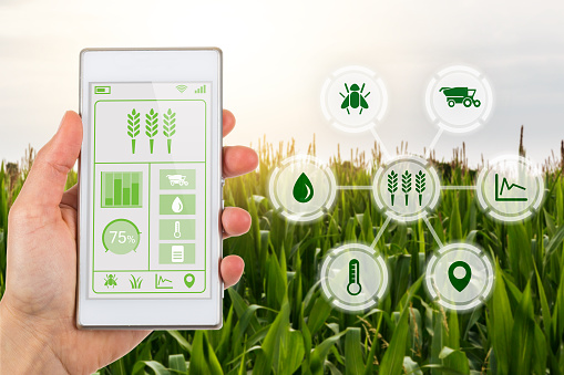 Curso online grátis de Introdução à Gestão de Fazenda
