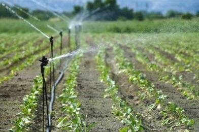 Curso online grátis de Irrigação