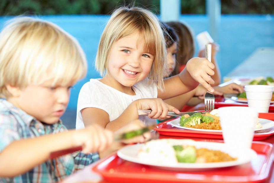 Curso online grátis de Nutrição Escolar