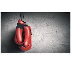 Curso online grátis de Teoria do Boxe